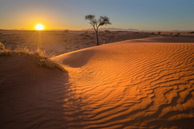Sunset at the red sand dune