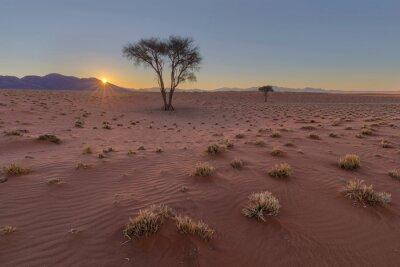 Sunset in dry Namib Desert