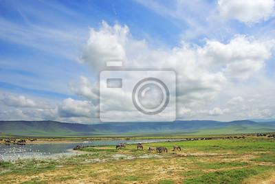Tanzania, África