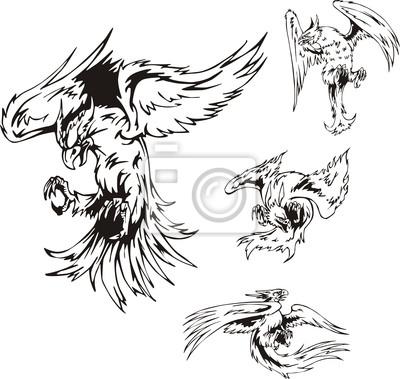 Tatuajes De Aves Rapaces Carteles Para La Pared Pósters Atacar