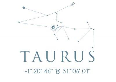 Póster TAURUS