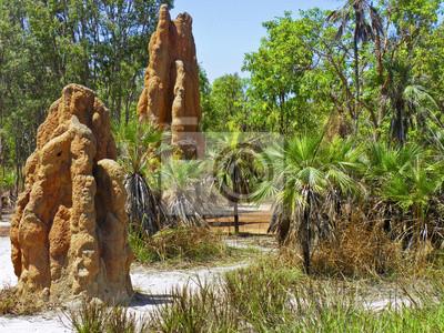 Termiteros