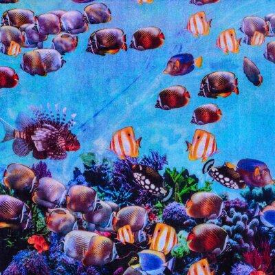 Póster Textura de la impresión del acuario de rayas de tela