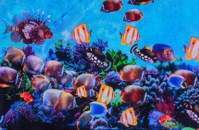 Póster Textura del acuario de rayas de tela de tela