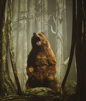 Póster The forest's tales,Brown grizzly bear in magical forest,3d illustration