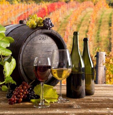 Póster Todavía del vino vida, vidrio, joven vid y el racimo de uvas
