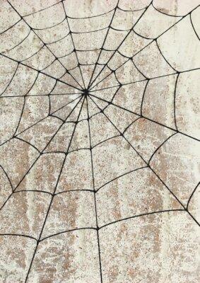 Póster Toile surd'araignée un mur. arte callejero