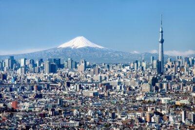 Póster Tokyo Skyline mit Mount Fuji und Skytree