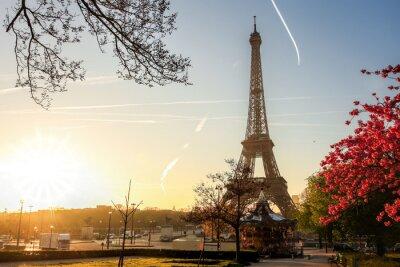 Póster Torre Eiffel con árbol de primavera en París, Francia