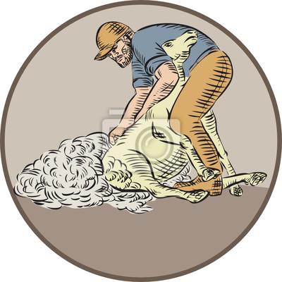 Trabajadores Agrícolas esquila de ovejas Círculo Aguafuerte