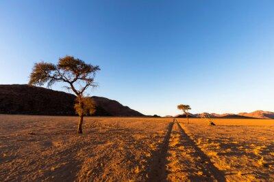 Tracks straight to the horizon in the desert