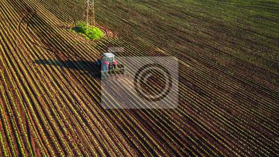 Tractor cultivando el campo en el resorte