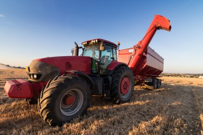 Póster Tractor de Agricultura en un campo de rastrojo
