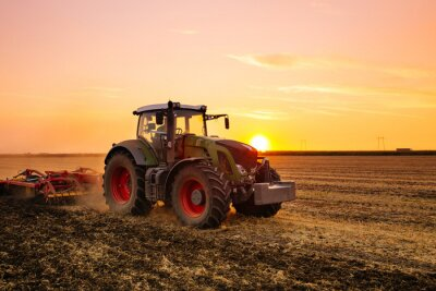 Póster Tractor en el campo de la cebada por la puesta del sol.