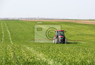 Tractor fumigación de campo de trigo con el rociador,