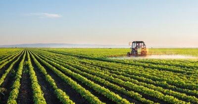 Póster Tractor pulverizando el campo de soja