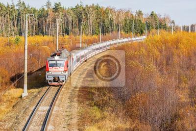 Tren moderno de alta velocidad.