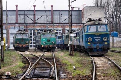 Trenes de carga polaco