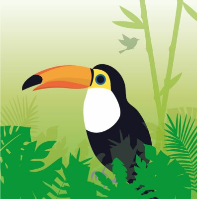 Tucán Parrot Jungle vectorial