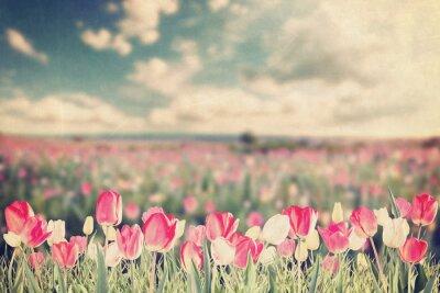 Póster Tulipán flores pradera vintage