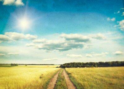 Póster Un campo de trigo de oro y cielo azul
