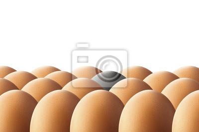 Un huevo negro. Concepto de unicidad