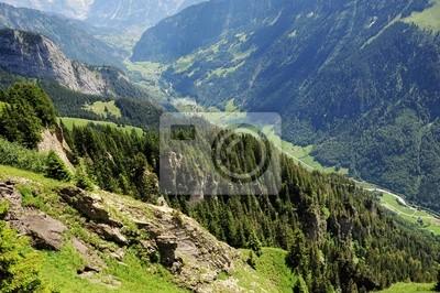 Valle de los Alpes suizos.