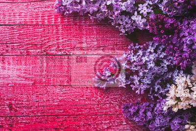 Varios lilas