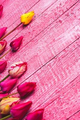 Varios tulipanes