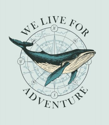 Póster Vector banner with big hand-drawn whale on the background of wind rose and old map in retro style. Illustration on the theme of travel, adventure and discovery with words We live for adventure