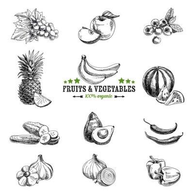 Póster Vector conjunto de frutas y verduras.