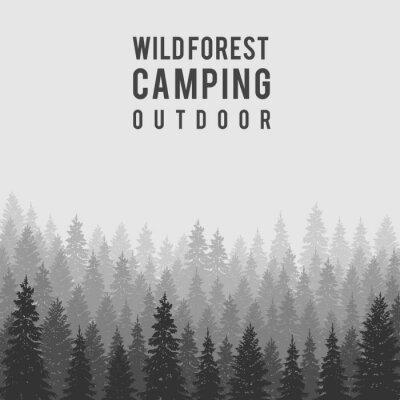Póster Vector de fondo de bosques de coníferas salvajes. Plantilla de diseño de camping al aire libre