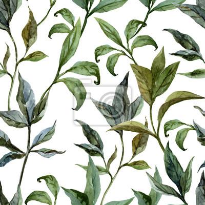 Vector patrón de la acuarela hermosa con peonías en fon5 blanco