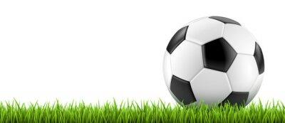 Póster Vectoriel Ballon de fútbol 2