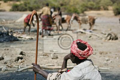 Venta Raccoglietore di. El Sod, Etipia