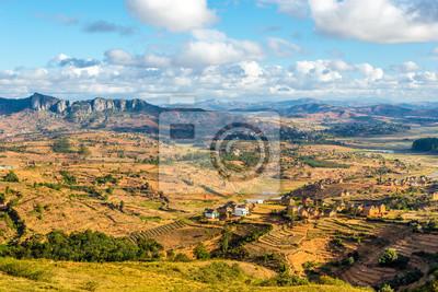 Ver en la campiña de Madagascar