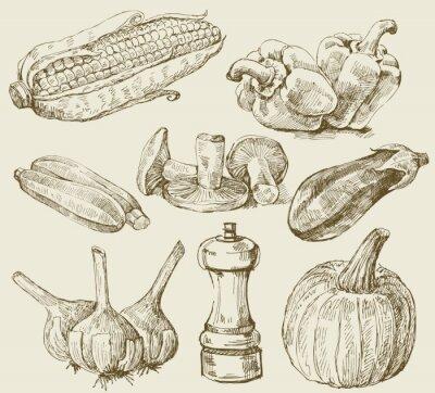 Póster Verduras conjunto dibujados a mano