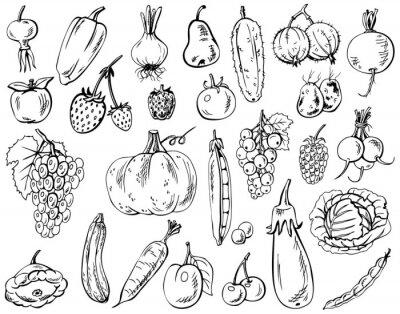 Póster verduras, frutas y bayas