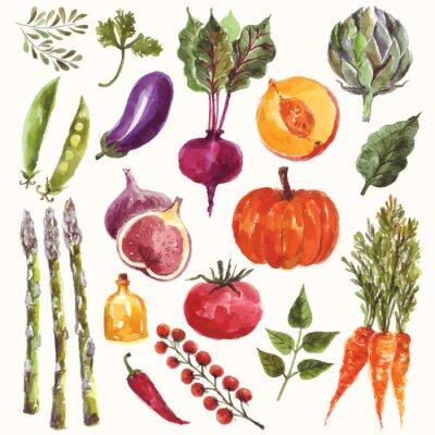 Póster Verduras y frutas de la acuarela