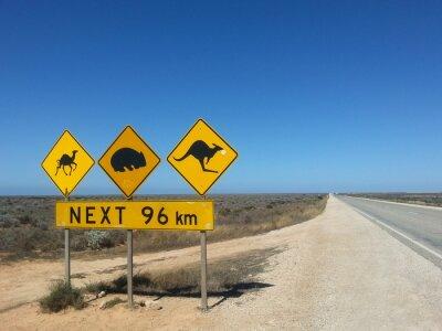 Póster Verkehrsschild Siguiente 96 km im Outback, Australien
