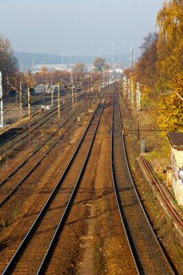 Viejas pistas de ferrocarril delante de la estación.