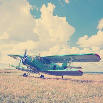 Póster Viejo avión en la hierba verde