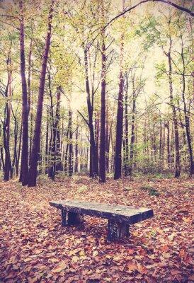 Póster Vintage imagen filtrada de banco en un bosque.