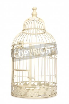 Póster Vintage looking bird cage isolated studio cutout