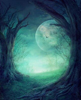 Póster Víspera Bosque Embrujado