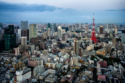 Póster Vista a la ciudad de Tokio
