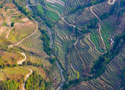 Póster Vista aérea de campos de arroz cerca de Pokhara