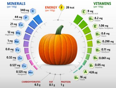 Póster Vitamins and minerals of pumpkin. Winter squash nutrients