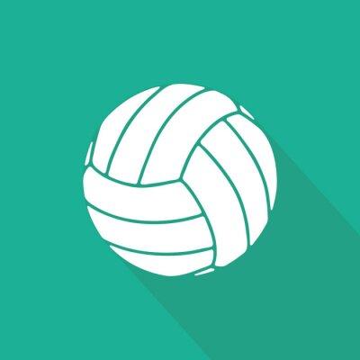 Póster Voleibol