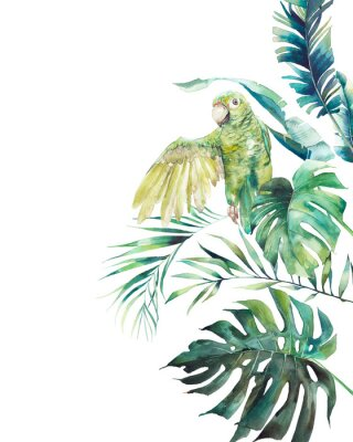 Póster Watercolor green parrot frame. Hand drawn greeting card design with exotic leaves and branches isolated on white background. Palm tree, banana leaves, mostera plants